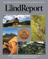 The Land Report Newsletter - article image