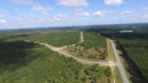 Land for Sale 105 Acres in Ben Hill County - article image