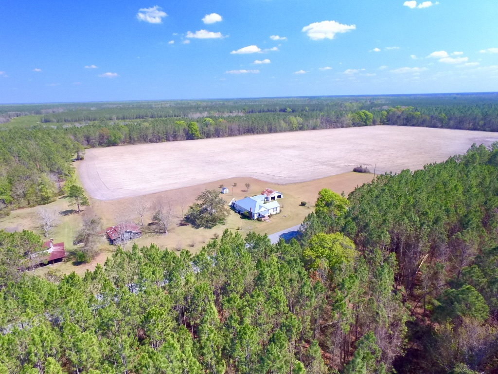 109 Acres, an Old Homesite and Timber Make This Aged Farm Desirable  - article image