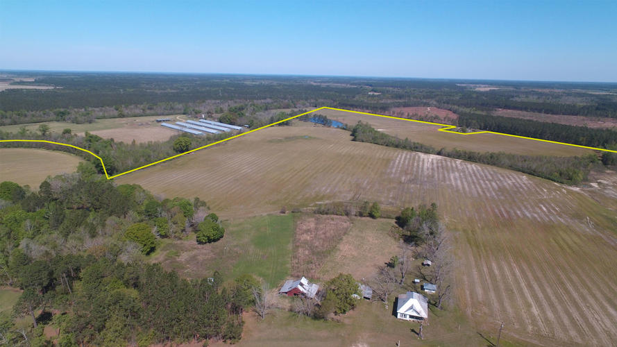 210 Acre Farm in Georgia - Will Subdivide - article image