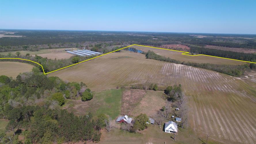 210 Acre Farm in Georgia - Will Subdivide - article image
