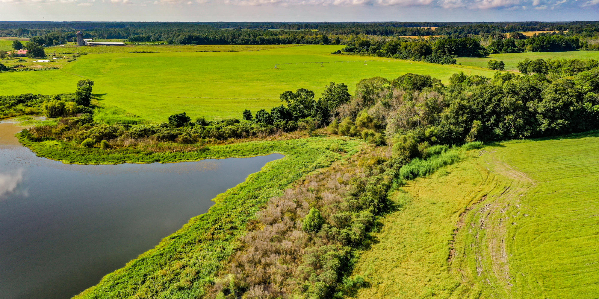 Pastureland, Cultivation, Home - Perfection in this Property - article image