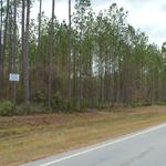 Tract 4 - Small Acreage in Clinch County thumbnail image