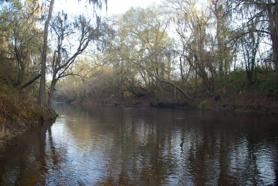 Alapaha River Tract - 822 Acres with River Front and Timberland image