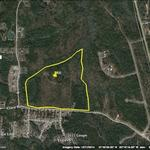 86 Acres, Great Timber Investment, Hunting, or Gentleman Farm thumbnail image