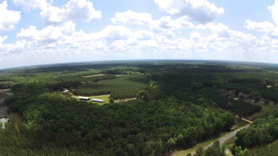 168 Acres with Home, Pond, Pines, Buildings image