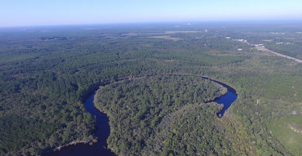 1139 Acres Satilla River Plantation image