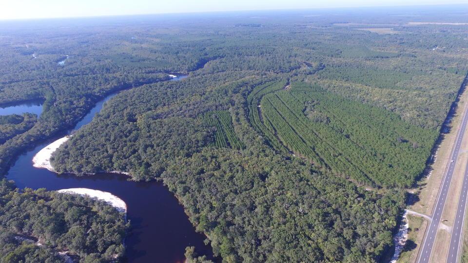 252 Acres Satilla River Island Reserve image
