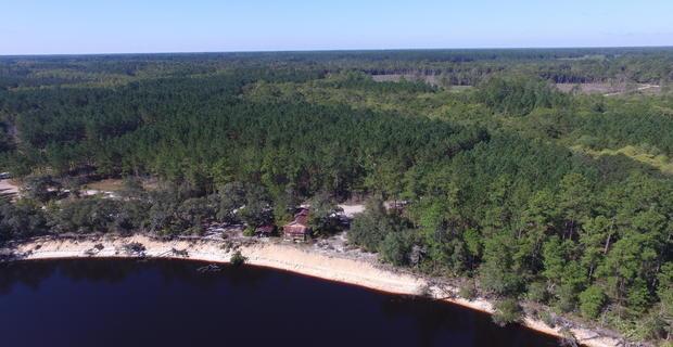 286 Acre Satilla River Camp image