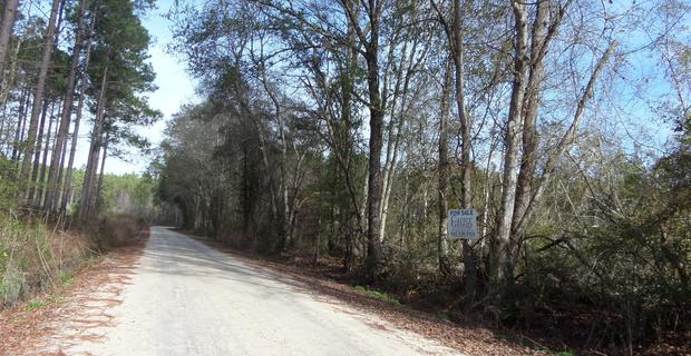 25 acres on Owens Road image