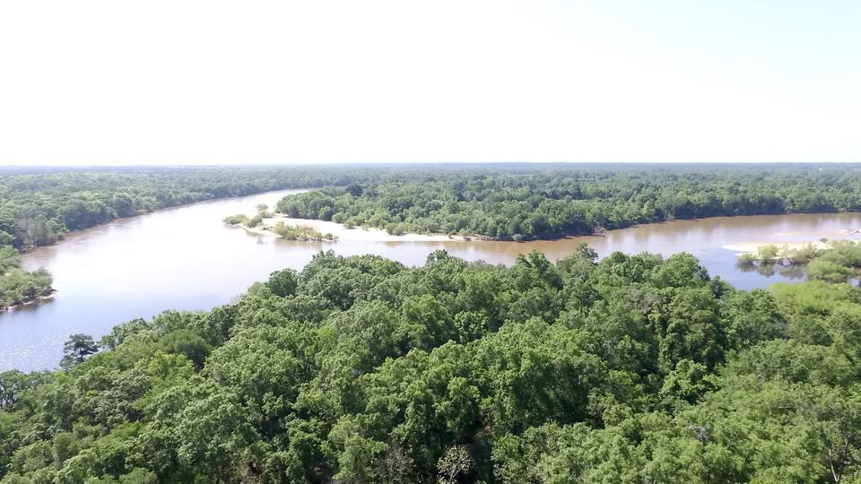 Beautiful 100 acre Island on Altamaha River image