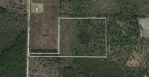 18.49 Acres on Oberry Road in Millwood image