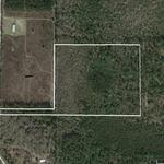 18.49 Acres on Oberry Road in Millwood thumbnail image