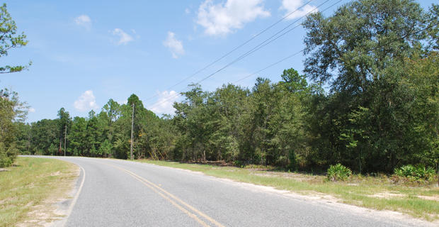 10 Acres Longford Road image