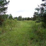 65 Acres Longford Road thumbnail image