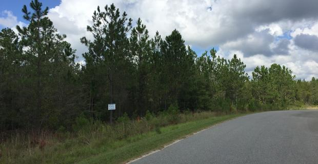 28.81 Acres at North Pointe Drive image