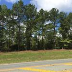 25 Acre Investment Properties  on Brentwood Drive thumbnail image