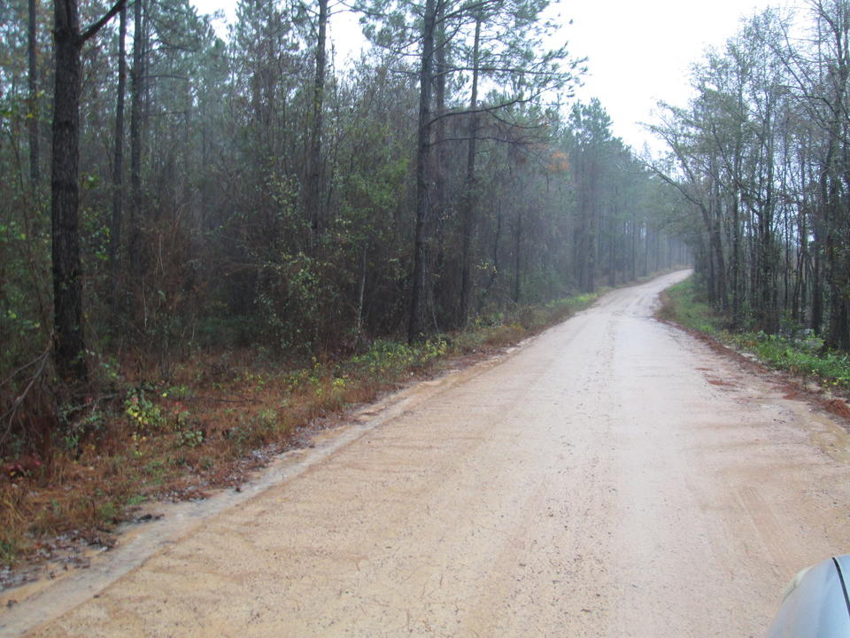 Investment Tract in Bacon County main image
