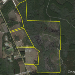 366 Acres Just Reduced to $695/Acre thumbnail image