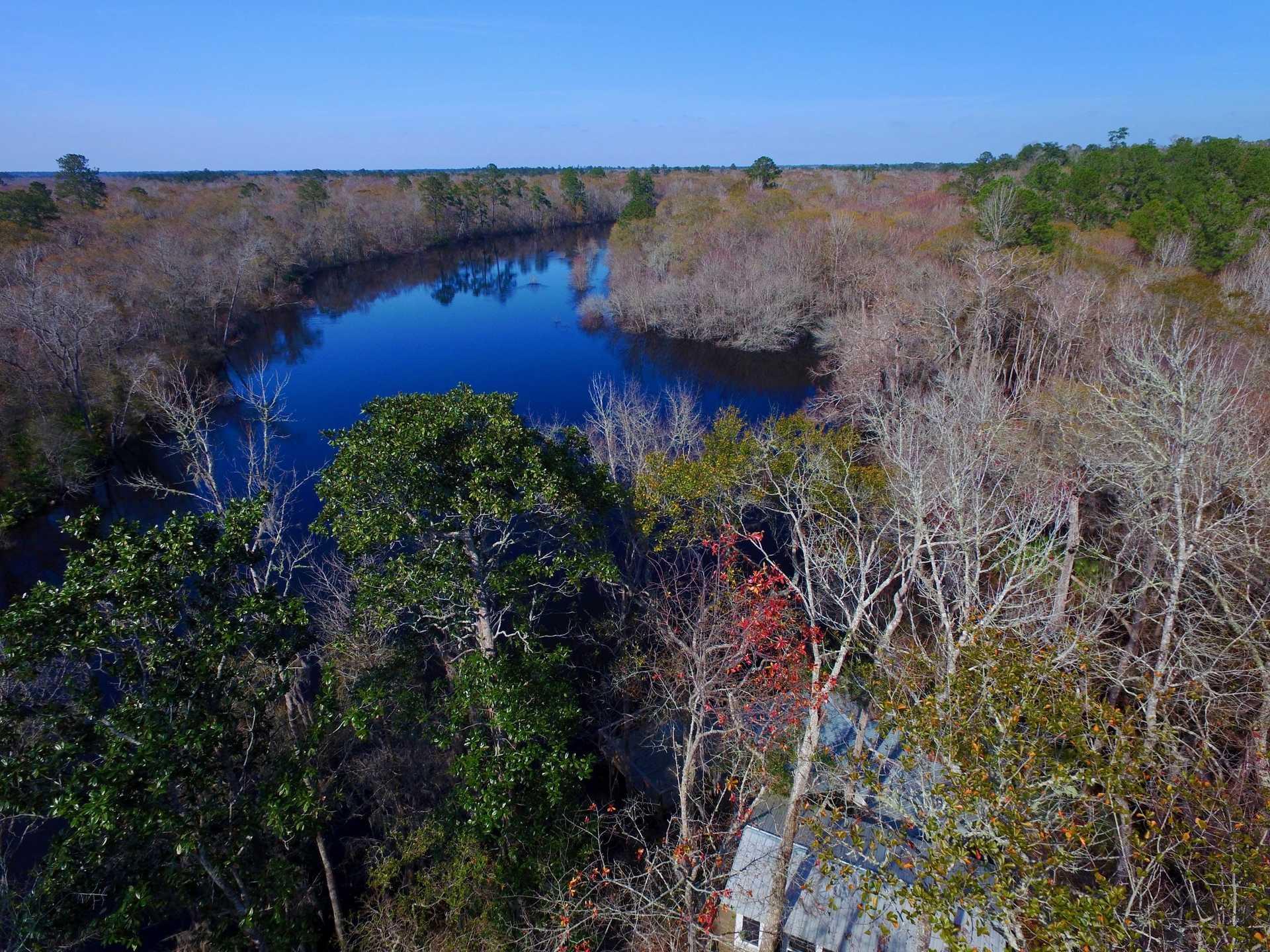 Satilla River Bluff Deepwater Home image