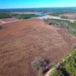 70 Acres Bacon County thumbnail image