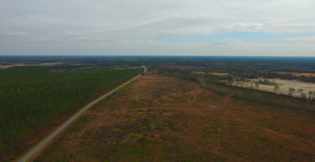 118 Acres Cutover Tract image
