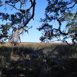 Hird Island Lots thumbnail image