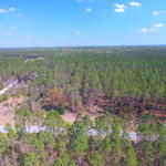 37.58 Acre Timber Plantation thumbnail image