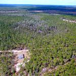 77 Acres with Custom Built Home at Taylor Bay thumbnail image