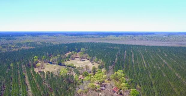 435 Acre Plantation Glynn County , GA image