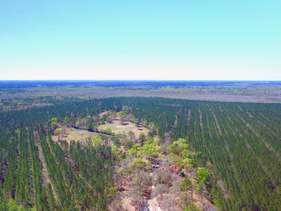 435 Acre Plantation Glynn County , GA image