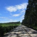 Great Gentleman Farm in Pierce County thumbnail image