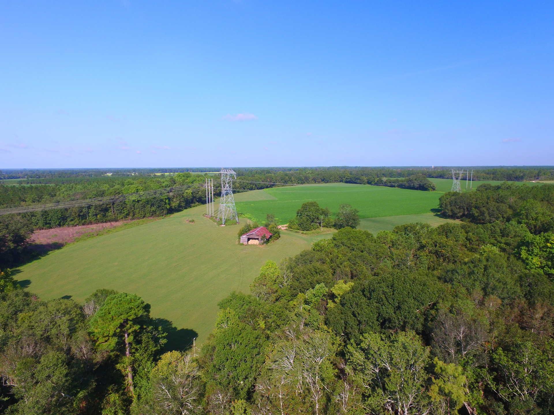 70 Acre Beautifully Aged Farm image