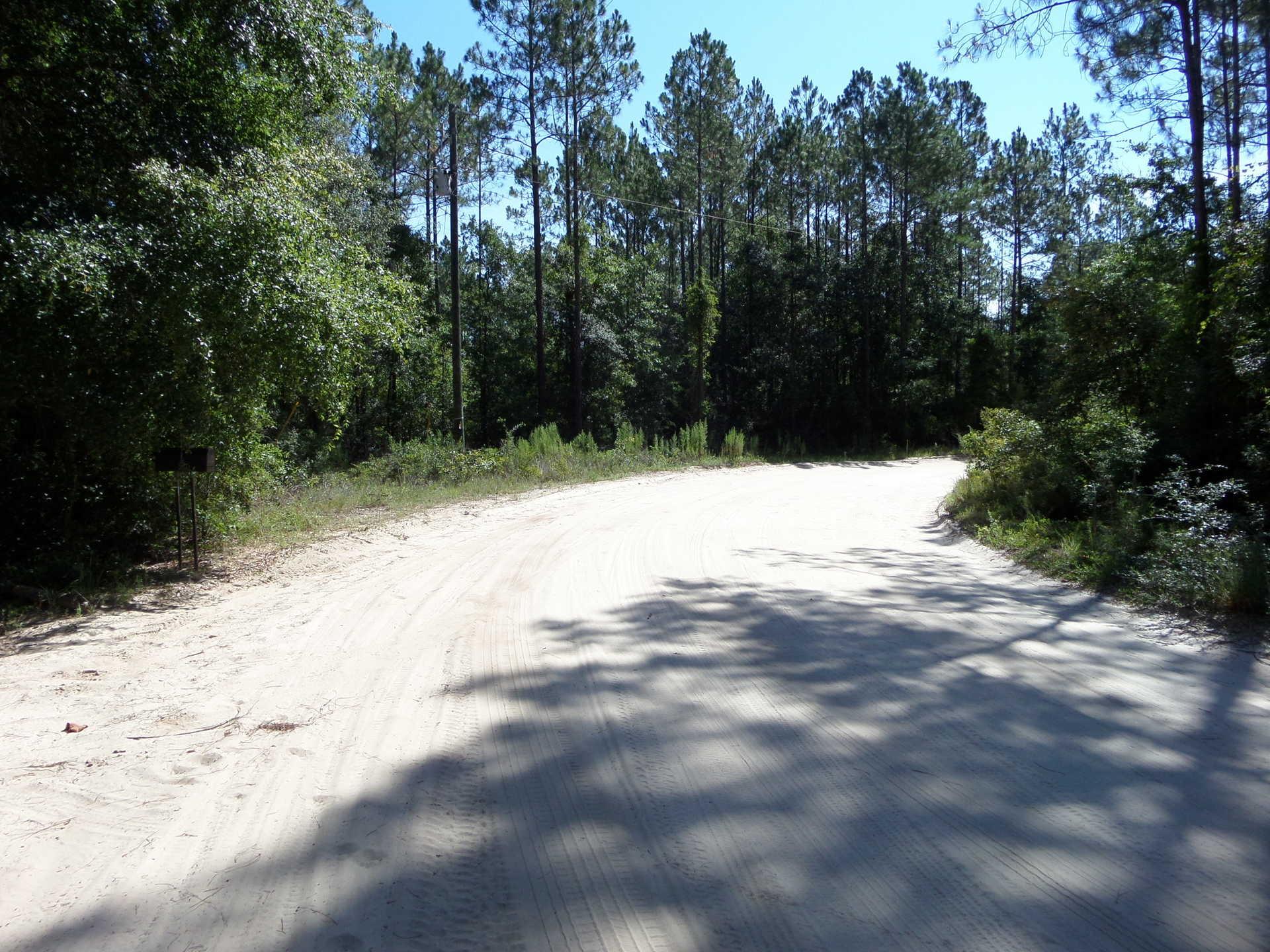 Homesite at McIntosh Creek Bluff image