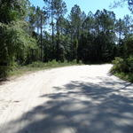 Homesite at McIntosh Creek Bluff thumbnail image