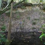 Homesite With McIntosh Creek Frontage thumbnail image