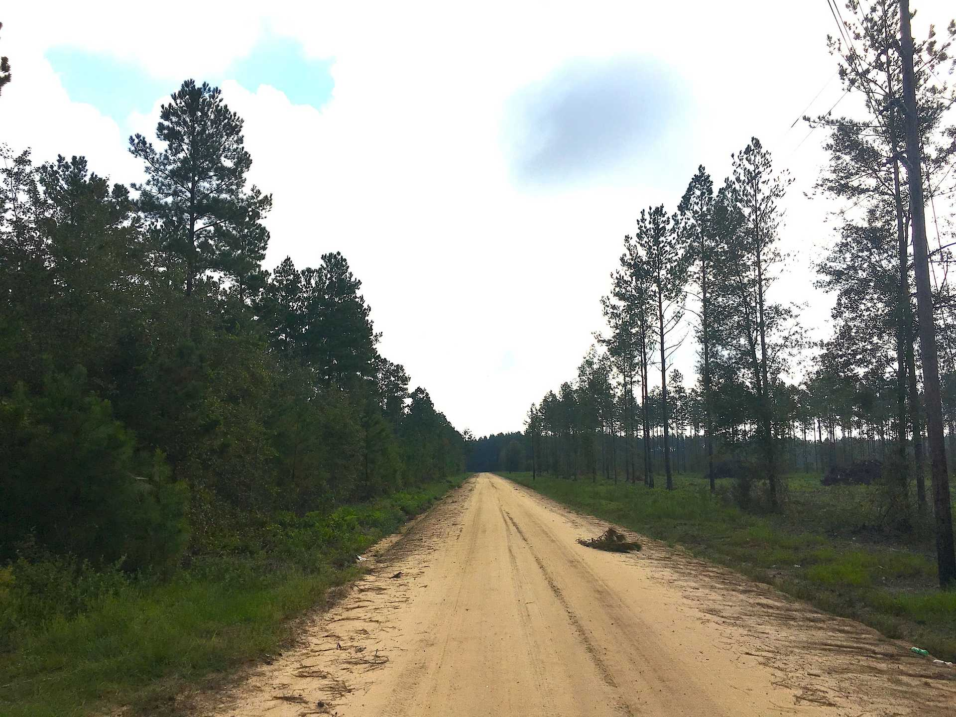 Versatile Tract in Millwood Plantation image