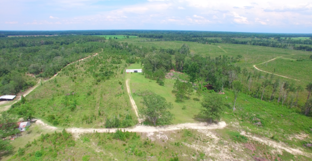 Live, Hunt, Invest in Toombs County Property image