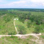Live, Hunt, Invest in Toombs County Property thumbnail image