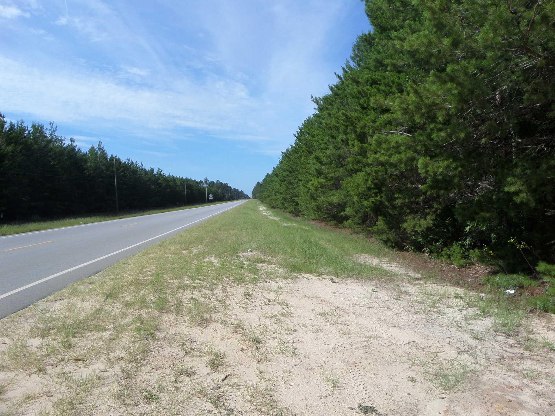 Louisiana Sand Hill Tract 5 image