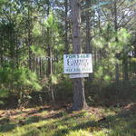 57 Acres Ideal for Recreational or Residential Endeavors thumbnail image