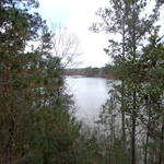 Riverview Homesite in Linden Acres thumbnail image