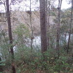 Waterfront Homesite on Goose Creek thumbnail image