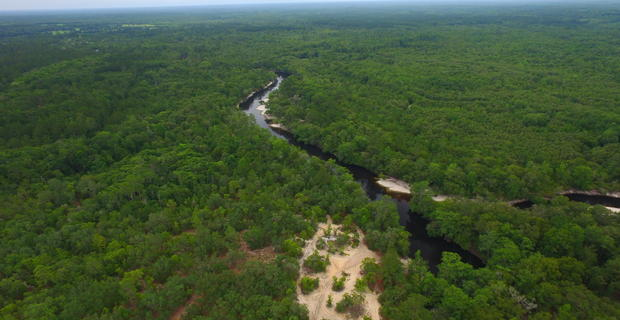 190 Acre Riverfront Property is Outdoorsman's Paradise image