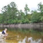 190 Acre Riverfront Property is Outdoorsman's Paradise thumbnail image