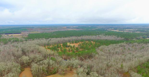 34+ Acres for the Outdoorsman image