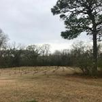 34+ Acres for the Outdoorsman thumbnail image
