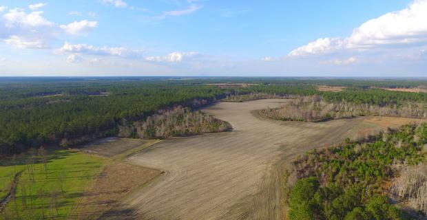 95 Acre Farm, Hunting Escape image