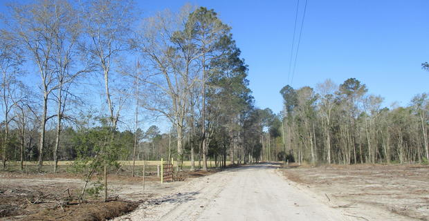 Perfect Homesite on Hopewell Rd image