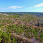 82 Acres Perfect for Huntsmen and Investors! thumbnail image
